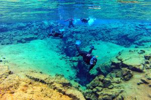 snorkeling and horseback riding